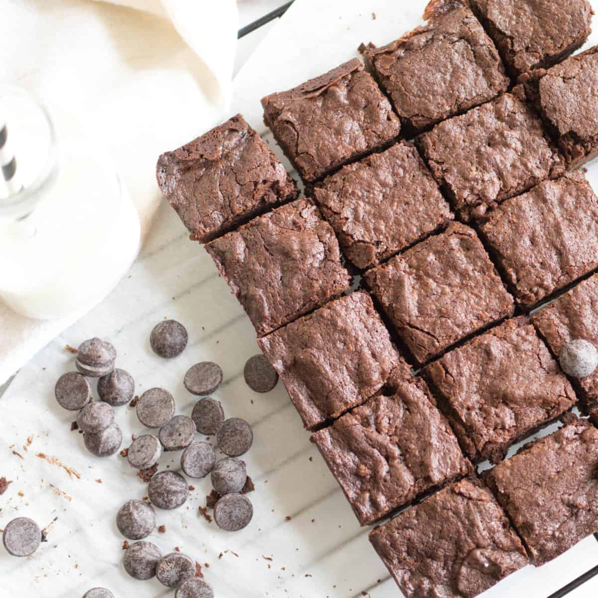 batch of brownies cut into squares with chocolate chips on a cooling rack.