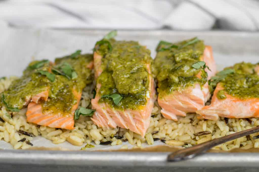 pesto salmon on bed of wild rice
